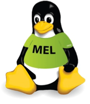 Linux - Mentor Graphics